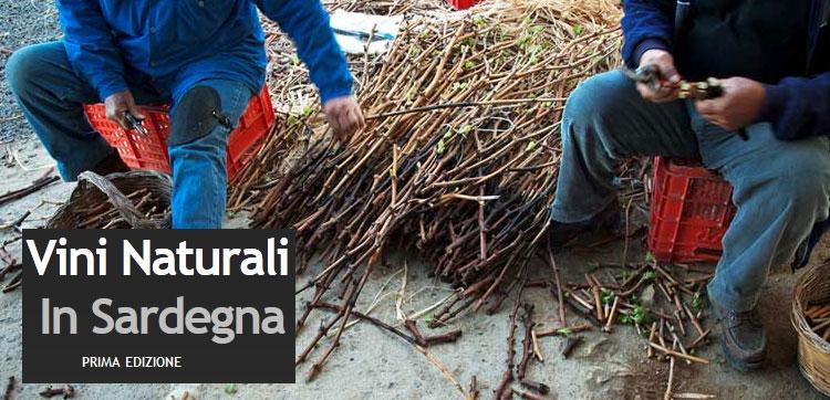 Vini naturali in Sardegna 2012